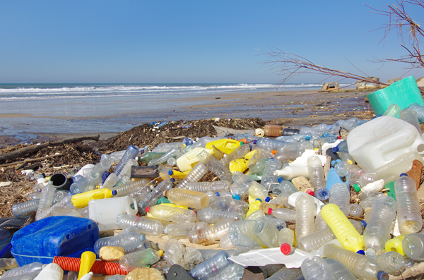 On current trends, the ocean will contain one metric tonne of plastic for every three metric tonnes of fish by 2025